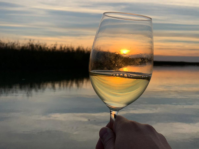 Delta Dunarii degustare vinuri